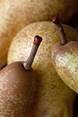 Wax on pear's peduncles