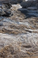 The Galana River Falls Luggar of Tsavo East NP Kenya