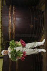 Man holding bunch of radishes giants Japan