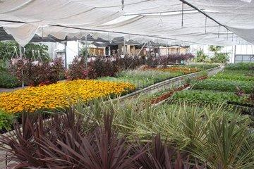 Municipal Greenhouses at Meudon-la-Foret France