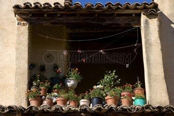 Terrace balcony flower summer in Provence France