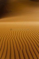 Ripple sand Erg Chebbi in Morocco