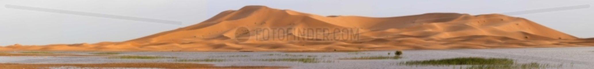 The lake Errachidia near Erg Chebbi in Morocco