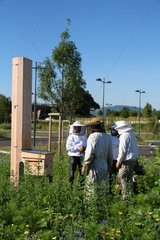 Beekeepers controlling a hive high output Parking - France