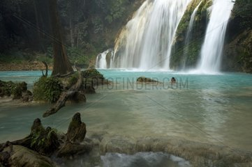 Chiflon waterfall with Cypress and travertines Mexico