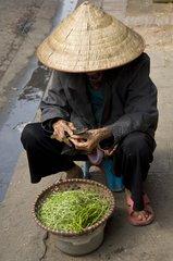 Around the ancient quarter Hanoi Vietnam