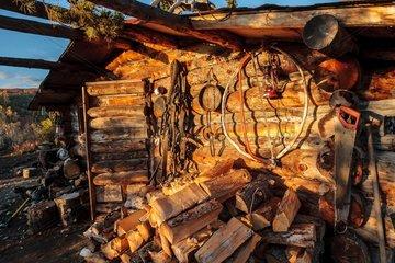 Wooden hut trapper traps - Yukon Canada