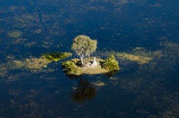 Aerial view of the Okavango Delta Botswana