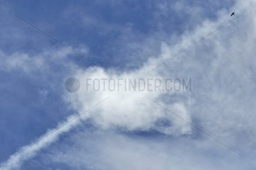 Vapor Trail during dissipation and altocumulus