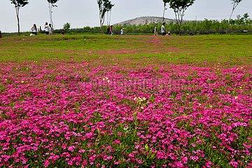 CHINA-SHANDONG-Anqiu KULTURELLER CREATIVITY Industrial Park (CN) CHINA-SHANDONG-Anqiu KULTURELLER CREATIVITY Industrial Park (CN) CHINA-SHANDONG-Anqiu KULTURELLER CREATIVITY Industrial Park (CN) CHINA-SHANDONG-Anqiu KULTURELLER CREATIVITY Industrial Park ( CN) CHINA-SHANDONG-Anqiu KULTURELLER CREATIVITY Industrial Park (CN) CHINA-SHANDONG-Anqiu KULTURELLER CREATIVITY Industrial Park (CN) CHINA-SHANDONG-Anqiu KULTURELLER CREATIVITY Industrial Park (CN) CHINA-SHANDONG-Anqiu KULTURELLES CREATIVITY INDUSTRIAL PARK (CN) CHINA-SHANDONG-Anqiu KULTURELLER CREATIVITY Industrial Park (CN) CHINA-SHANDONG-Anqiu KULTURELLER CREATIVITY Industrial Park (CN) CHINA-SHANDONG-Anqiu KULTURELLER CREATIVITY Industrial Park (CN) CHINA-SHANDONG-Anqiu KULTURELLEN CREATIVITY Industrial Park (CN)