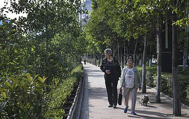 CHINA-SHAANXI-BAOJI Begr?nung EFFORTS (CN) CHINA-SHAANXI-BAOJI Begr?nung EFFORTS (CN) CHINA-SHAANXI-BAOJI Begr?nung EFFORTS (CN) CHINA-SHAANXI-BAOJI Begr?nung EFFORTS (CN)