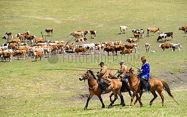 CHINA-INNER MONGOLIA Hirten-Migration (CN) CHINA-INNER MONGOLIA Hirten-Migration (CN)