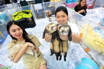 THAILAND-BANGKOK-PET EXPO
