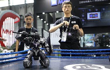 CHINA-SHANGHAI-CES ASIA 2019 (CN)