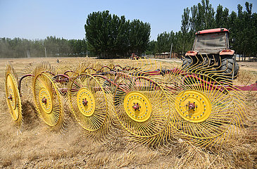 #CHINA-WHEAT STRAW-RECYCLING (CN)