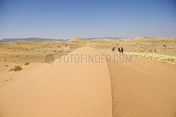 CHINA-NINGXIA-Zhongwei-Desert KONTROLL (CN)