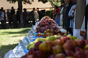 AFGHANISTAN-Balkh-AGRAR PRODUCTS EXPO