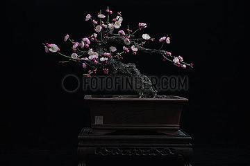 CHINA-JIANGSU-YANGZHOU-INTANGIBLE HERITAGE-CHOCOLATE VINE-ARTIFICIAL FLOWER (CN)