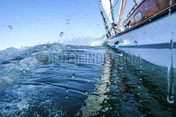 Regatta in der Kieler Bucht p1257m2077424
