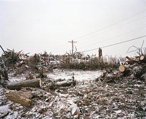 Nach dem Tornado p1415m2076764