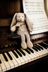 Kuscheltier am Klavier p999m2071832