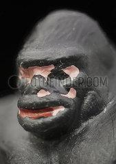 Gorilla Spielzeugfigur p250m2077445