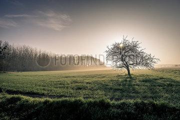 Sonnenaufgang p1402m2076938
