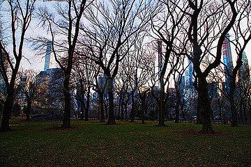 Central Park p1399m2065845