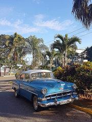 Oldtimer auf den Strassen Kubas p162m2076964