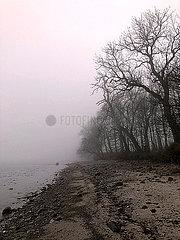Nebel am Ostseestrand
