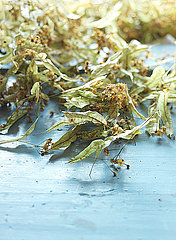 Getrocknete Lindenblueten