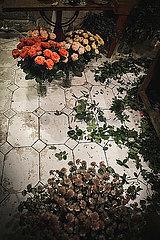 Blumengeschaeft mit Rosen