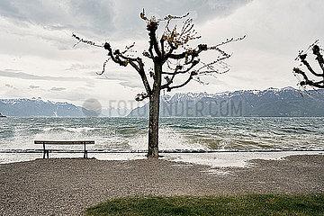 Sitzbank am Ufer des Genfer Sees