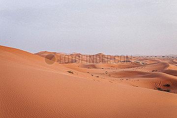 Duenen der Sahara in Marokko in warmem Licht bei Sonnenaufgang