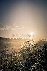 Morgennebel p1402m2076941