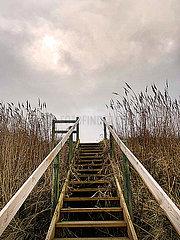 Strandtreppe p382m2076290