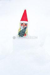 Weihnachts-Zwerg p454m2076572