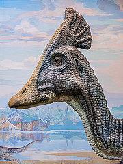 Dinosaurier im Museum im Diorama p390m2076258
