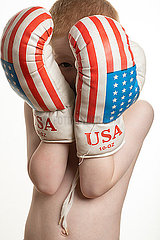 Kleiner Boxer p236m2072643