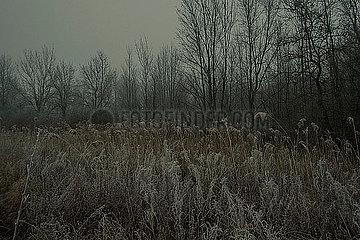 Winter in Issoudun p600m2072995