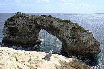 Spanien  Mallorca - Felsentor Es Portas an der Cala Santanyi