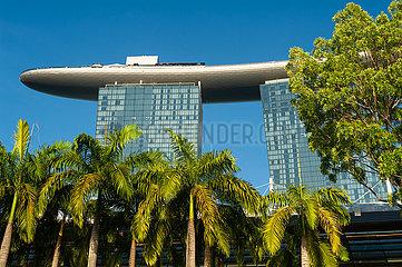 Singapur  Republik Singapur  Marina Bay Sands Hotel mit Palmen