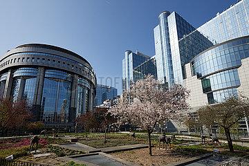 Bruessel  Region Bruessel-Hauptstadt  Belgien - Das Europaparlament vom Leopoldpark aus gesehen.