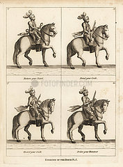 Exercise of the horse.