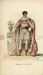 Knight of the Bath in ceremonial mantle and costume.