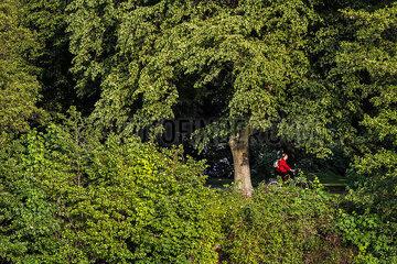 FEA Radfahrer Natur Tiergarten