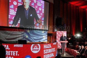 Frans Timmermanns EP-Wahl 2019 JOKER190216891609.jpg