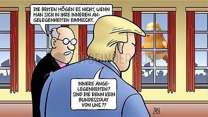 Trump-Einmischung