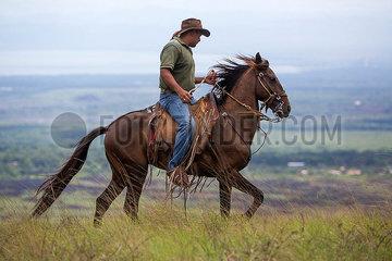 cowboy in nicaragua