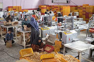 industry afghanistan